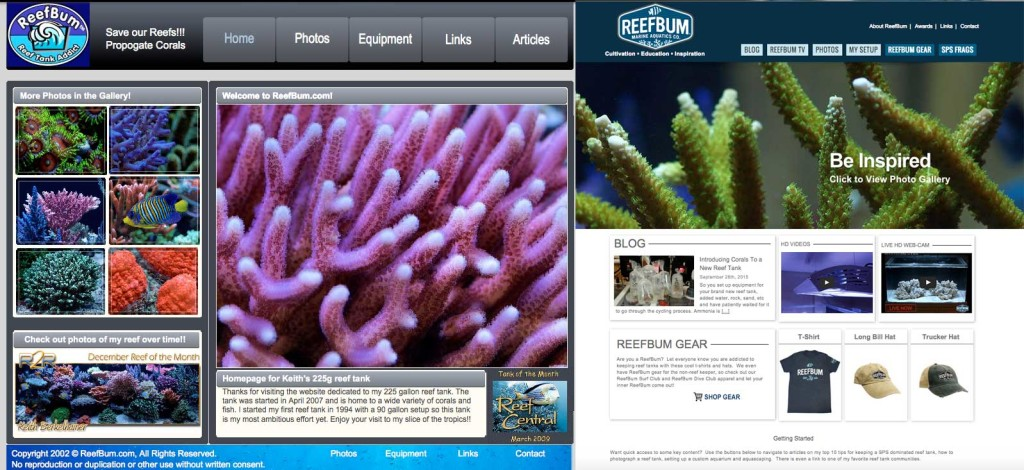 ReefBum home page comparison