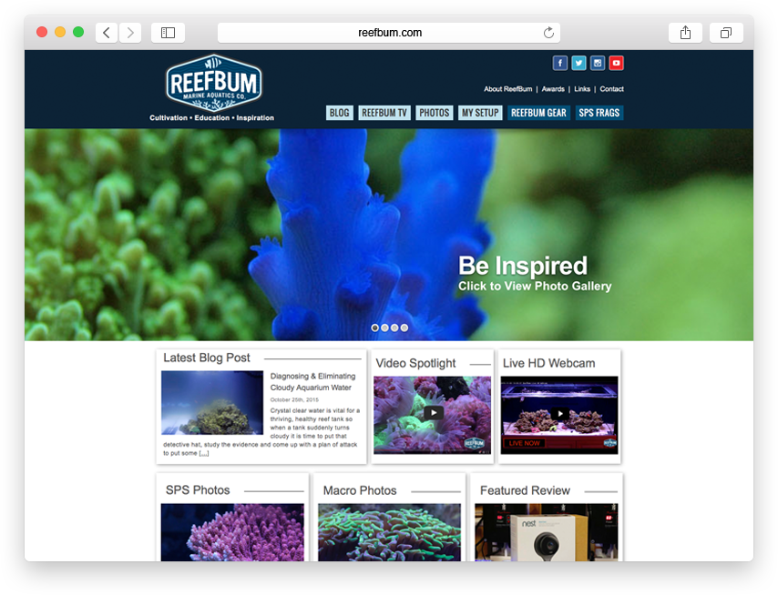Reefbum website